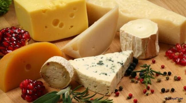 Dünya Mutfağı ve Türkiye'den Peynir Çeşitleri