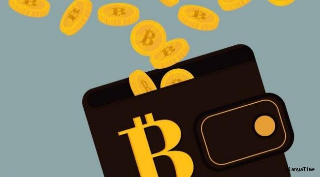 İçinde 220 milyon dolar olan Bitcoin cüzdanının şifresini kaybetti: Son iki tahmin hakkı kaldı